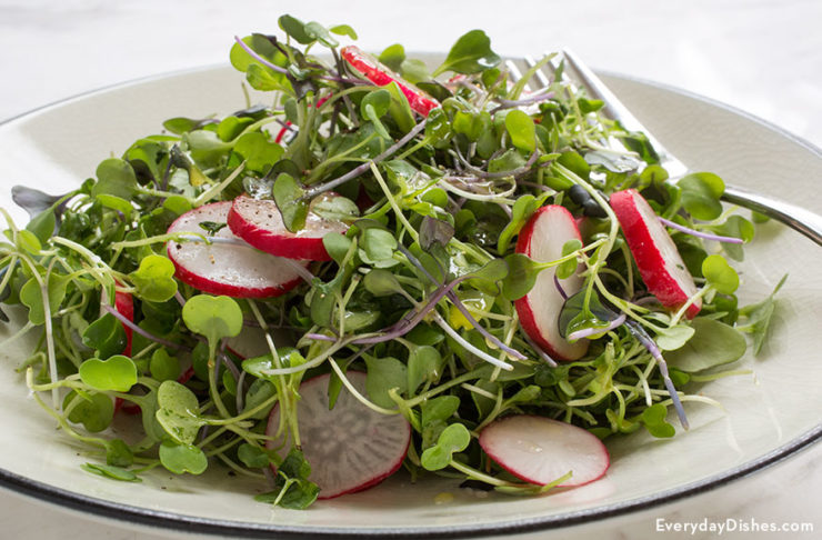 Micro green salad recipe with lime dressing
