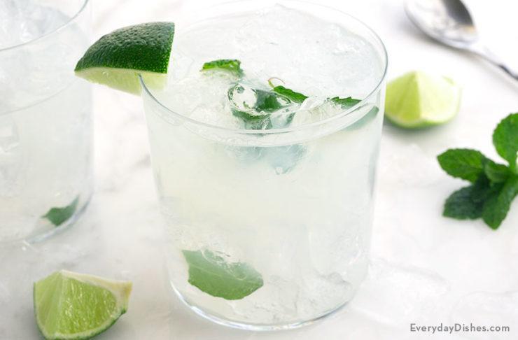 Vodka Mojito Recipe