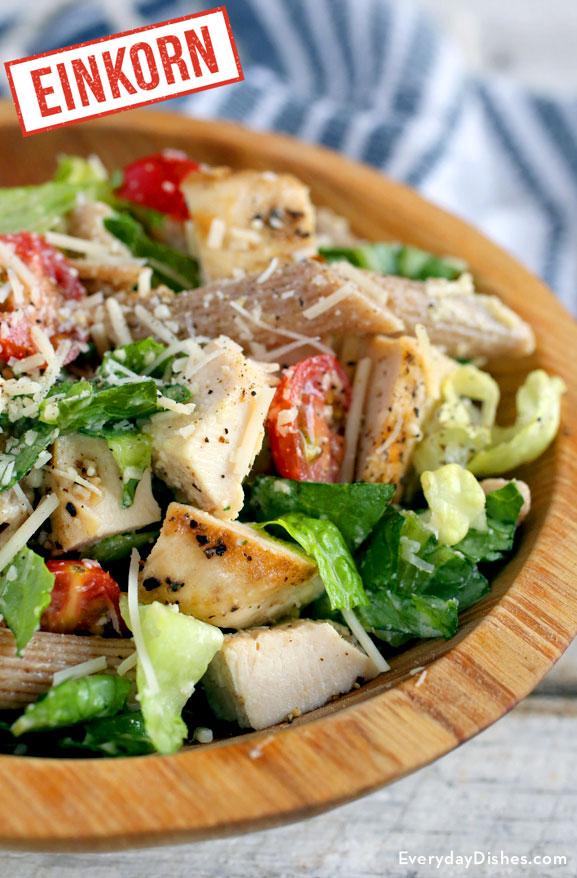 Chicken Caesat einkorn pasta salad recipe