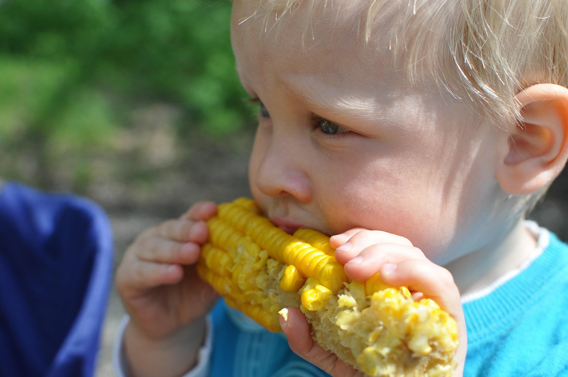 Tips for Easily Feeding Your Toddler